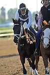 Uncle Mo on the Churchill Downs track on April 30, 2011.