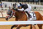 OZONE PARK, NY - MARCH 05: Mei Ling #2 with Jose Ortiz win the Heavenly Prize Stakes Day at Aqueduct Race Track in Ozone Park, New York on March 5, 2016. (Photo by Sue Kawczynski)
