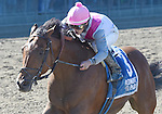 Vyjack (no. 3), ridden by Irad Ortiz Jr. and trained by Rudy Rodriquez, wins the 34th running of the grade 2 Kelso Handicap for three year olds and upward on September 27, 2014 at Belmont Park in Elmont, New York.  (Bob Mayberger/Eclipse Sportswire)