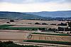 Getreidefelder im Rheinhessischen Hügelland