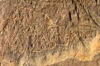 Elephant engraving, neolithic rockart of the Acacus Mountains or Tadrart Acacus range, Tassili n'Ajjer National Park, Unesco World Heritage Site, Algeria, Sahara, North Africa, Africa