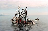Salmon seiner, the F/V Monk's Habit, fishing off Kodiak Island, Alaska
