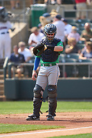 Hartford Yard Goats catcher Willie MacIver (22) checks notes on his wristband during a game against the Somerset Patriots on September 12, 2021 at TD Bank Ballpark in Bridgewater, New Jersey.  (Mike Janes/Four Seam Images)