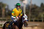 September 29 2018 : Vasilika with Flavien Prat up defeats Paved and Joel Rosario to win in the Rodeo Drive Stakes on Breeders Cup Preview Day at <br /> Santa Anita Park on September 29, 2018 in Arcadia, California. Evers/ESW/CSM