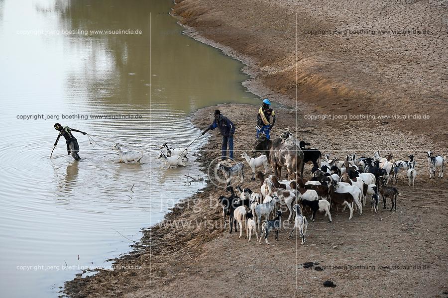 BURKINA FASO, Kaya, cattle herder with goats at small river/ Tierherde in einem Flussbett