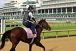 LOUISVILLE, KY - MAY 02: Mokat (Uncle Mo x Flashy Frolic, by Premiership) jogs at Churchill Downs, Louisville KY. She is pointed toward the Kentucky Oaks. Owner J K Racing Stable, trainer Richard Baltas. (Photo by Mary M. Meek/Eclipse Sportswire/Getty Images)