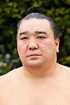 Harumafuji, <br /> APRIL 17, 2017 - Sumo : Yasukuni Shrine Honozumo is a ceremonial annual sumo tournament held in the precincts of the Yasukuni Shrine in Tokyo, Japan. (Photo by Yohei Osada/AFLO SPORT)