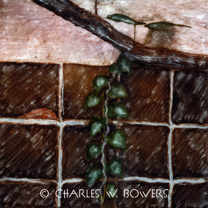 Vine decending from grape arbor in the family dining area covered with grape arbor. Lourmarin Provence<br /> <br /> -Limited Edition of 50 Prints