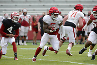 Arkansas running back Raheim Sanders (5) carries the ball Saturday, April 3, 2021, during a scrimmage at Razorback Stadium in Fayetteville. Visit nwaonline.com/210404Daily/ for today's photo gallery. <br /> (NWA Democrat-Gazette/Andy Shupe)