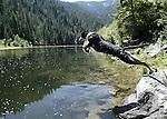 Rocky, the Australian shepherd, leaps into Kelly Creek, near Pierce, Idaho, on Aug, 3, 2005. .Photo by Cathleen Allison