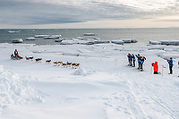 Aliy Zirkle runs off of the Bering Sea ice near Nome with open water and icebergs in the background with a crowd of spectators cheering her on as she heads to a 4th place finish of the 2019 Iditarod on Wednesday March 13<br /> <br /> Photo by Jeff Schultz/  (C) 2019  ALL RIGHTS RESERVED