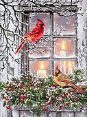 Dona Gelsinger, CHRISTMAS SYMBOLS, WEIHNACHTEN SYMBOLE, NAVIDAD SÍMBOLOS, paintings+++++,USGE2007,#xx# ,cardinal