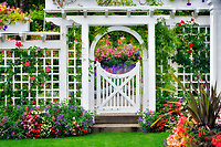 Gate with flowers at Butchart Gardens, B.C. Canada