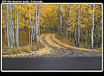 Looking to live off the grid? Dirt road turns off paved road, with autumn aspen trees. <br />