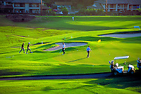 A small group enjoys the lush green golf course and soft sunlight at Wailea, Maui.