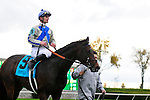 31 October 2009: Blame (no 9), ridden by Jamie Theriot, and trained by Albert M. Stall Jr. wins the 51st running of the $150,000 Fayette Grade II stakes race.