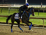 October 30, 2018 : Finley'sluckycharm trains in preparation for the Breeders' Cup on October 30, 2018 in Louisville, KY.  Candice Chavez/ESW/CSM