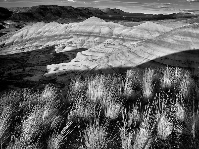 Grass and Painted Hills. John Day Fossil Beds National Monument. Oregon