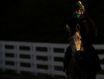 November 4, 2020: Harvey'S Lil Goil, trained by trainer William I. Mott, exercises in preparation for the Breeders' Cup Distaff at Keeneland Racetrack in Lexington, Kentucky on November 4, 2020. Carolyn Simancik/Eclipse Sportswire/Breeders Cup