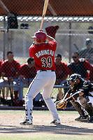 Ryan Babineau - Arizona Diamondbacks - 2009 spring training.Photo by:  Bill Mitchell/Four Seam Images