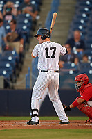 Tampa Yankees center fielder Trey Amburgey (17) at bat in front of catcher Jose Godoy (27) during a game against the Palm Beach Cardinals on July 25, 2017 at George M. Steinbrenner Field in Tampa, Florida.  Tampa defeated Palm beach 7-6.  (Mike Janes/Four Seam Images)