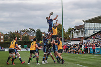 Byron Hodge of London Scottish collects during a line out during the Greene King IPA Championship match between London Scottish Football Club and Ealing Trailfinders at Richmond Athletic Ground, Richmond, United Kingdom on 8 September 2018. Photo by David Horn.