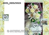 Alfredo, WEDDING, HOCHZEIT, BODA, photos+++++,BRTOPHULF9029,#W#