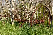Old hay rake at at Wagon Hill Farm in Durham, New Hampshire USA.
