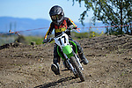 NELSON, NEW ZEALAND - 2021 Mini Motocross Champs: 2.10.21, Saturday 2nd October 2021. Richmond A&P Showgrounds, Nelson, New Zealand. (Photos by Barry Whitnall/Shuttersport Limited) 17