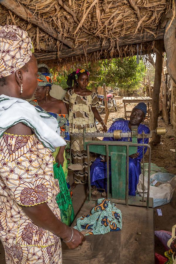 Cashew Nut Buyer Weighing Nuts, Fass Njaga Choi, The Gambia.