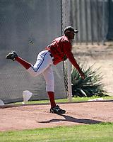 Christian Beltre - Arizona Diamondbacks 2008 spring training..Photo by:  Bill Mitchell/Four Seam Images