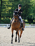 LEXINGTON, KY - APRIL 28: #4 Abbey GS and rider Jessica Phoenix from Canada in the warm up ring before their Dressage test in the Rolex Three Day Event, Dressage Day 1, at the Kentucky Horse Park in Lexington, KY.  April 28, 2016 in Lexington, Kentucky. (Photo by Candice Chavez/Eclipse Sportswire/Getty Images)