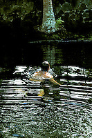 On a hot summer day, a local man resurfaces after diving into a warm springs pond on the Big Island of Hawai'i.