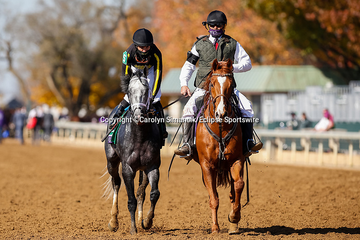 November 7, 2020 : Knicks Go, ridden by Joel Rosario, wins the Big Ass Fans Dirt Mile on Breeders' Cup Championship Saturday at Keeneland Race Course in Lexington, Kentucky on November 7, 2020. Carolyn Simancik/Breeders' Cup/Eclipse Sportswire/CSM