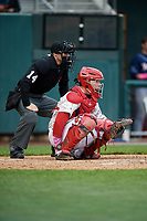 Harrisburg Senators catcher Jake Lowery (3) and home plate umpire Randy Rosenberg await the pitch during the second game of a doubleheader against the New Hampshire Fisher Cats on May 13, 2018 at FNB Field in Harrisburg, Pennsylvania.  Harrisburg defeated New Hampshire 2-1.  (Mike Janes/Four Seam Images)