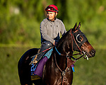 OCT 26: Breeders' Cup Distaff entrant Ollie's Candy, trained by John W. Sadler, at Santa Anita Park in Arcadia, California on Oct 26, 2019. Evers/Eclipse Sportswire/Breeders' Cup