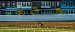 May 13, 2021: Rombauer exercises for the Preakness Stakes at Pimlico Race Course in Baltimore, Maryland. Scott Serio/Eclipse Sportswire/CSM