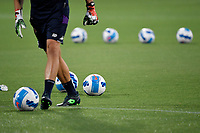 Balls on the pitch are seen during the warm up of the Italy cup football match between ACF Fiorentina and Cosenza calcio at Artemio Franchi stadium in Florence (Italy), August 13th, 2021. ACF Fiorentina won 4-0 over Cosenza calcio. Photo Andrea Staccioli / Insidefoto