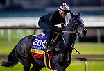 October 31, 2018 : La Force (GER), trained by Patrick Gallagher, exercises in preparation for the Breeders' Cup Distaff at Churchill Downs on October 31, 2018 in Louisville, Kentucky. Evers/ESW/Breeders Cup