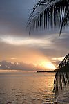 Cook's Bay, Moorea, French Polynesia; sunrise views of Cook's Bay through palm fronds , Copyright © Matthew Meier, matthewmeierphoto.com All Rights Reserved