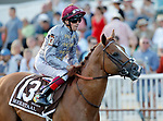 ARLINGTON HEIGHTS, IL - AUGUST 12: Mekhtaal #13, ridden by Lanfranco Dettori, during the post parade before the Arlington Million on Arlington Million Day at Arlington Park on August 12, 2017 in Arlington Heights, Illinois. (Photo by Jon Durr/Eclipse Sportswire/Getty Images)