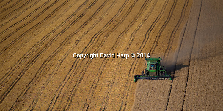 A combine harvests wheat along the banks of Tuckahoe Creek.
