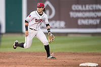 Lansing Lugnuts shortstop Bo Bichette (10) on defense during the Midwest League baseball game against the Bowling Green Hot Rods on June 29, 2017 at Cooley Law School Stadium in Lansing, Michigan. Bowling Green defeated Lansing 11-9 in 10 innings. (Andrew Woolley/Four Seam Images)