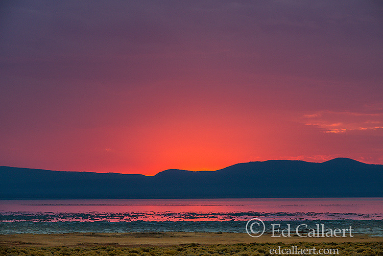 Dawn, Mono Lake, Mono Basin National Forest Scenic Area, Inyo National Forest, Eastern Sierra, California
