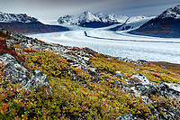 Fall landscape of tundra and Knik Glacier in Chugach Mountains. Southecentral, Alaska <br /> <br /> Photo by Jeff Schultz/  (C) 2020  ALL RIGHTS RESERVED
