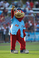 "Inland Empire 66ers mascot ""Bernie"" entertains the fans prior to the game against the Stockton Ports at San Manuel Stadium on July 6, 2017 in San Bernardino, California. The Ports defeated the 66ers 7-6.  (Brian Westerholt/Four Seam Images)"