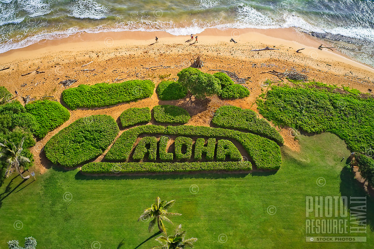 Aerial view of the beautiful ALOHA garden in front of G and H buildings at Kauai Beach Villas (KBV), Lihu'e, Kaua'i. It is always trimmed perfectly by KBV's maintenance crew.