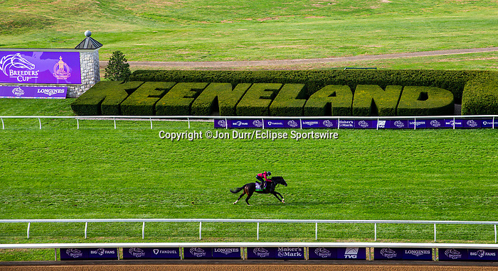 November 5, 2020: Kameko, trained by trainer Andrew M. Balding, exercises in preparation for the Breeders' Cup Mile at Keeneland Racetrack in Lexington, Kentucky on November 5, 2020. Jon Durr/Eclipse Sportswire/Breeders Cup