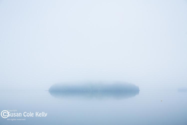 Summer fog on Tauton Bay in Hancock County, Maine, USA