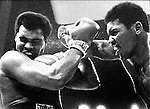World heavyweight title, Muhammad Alie Jimmy Young fight, 1976,Landover Maryland April 1976,